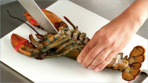 A sedated, live lobster is flat on its back on a cutting board with claws taped closed. A person's left hand is holding the tail while the right hand is cutting with a large kitchen knife lengthways through the abdomen towards the head.