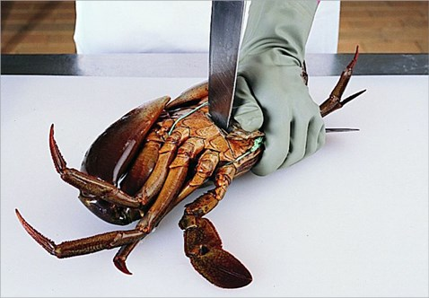 crab-kill-with-knife